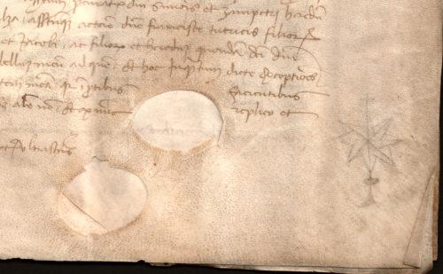 1403-particolare-pergamena