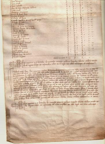 1498-7-febb-inferiore