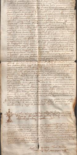 1564-2-ott-inferiore
