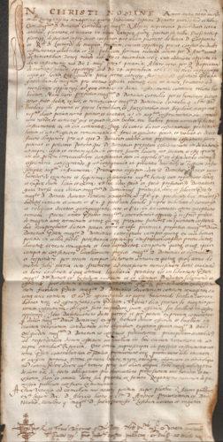 1564-2-ott-superiore