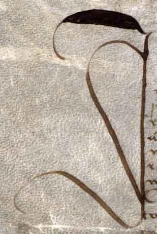 atto-07101515-avignone-capoverso